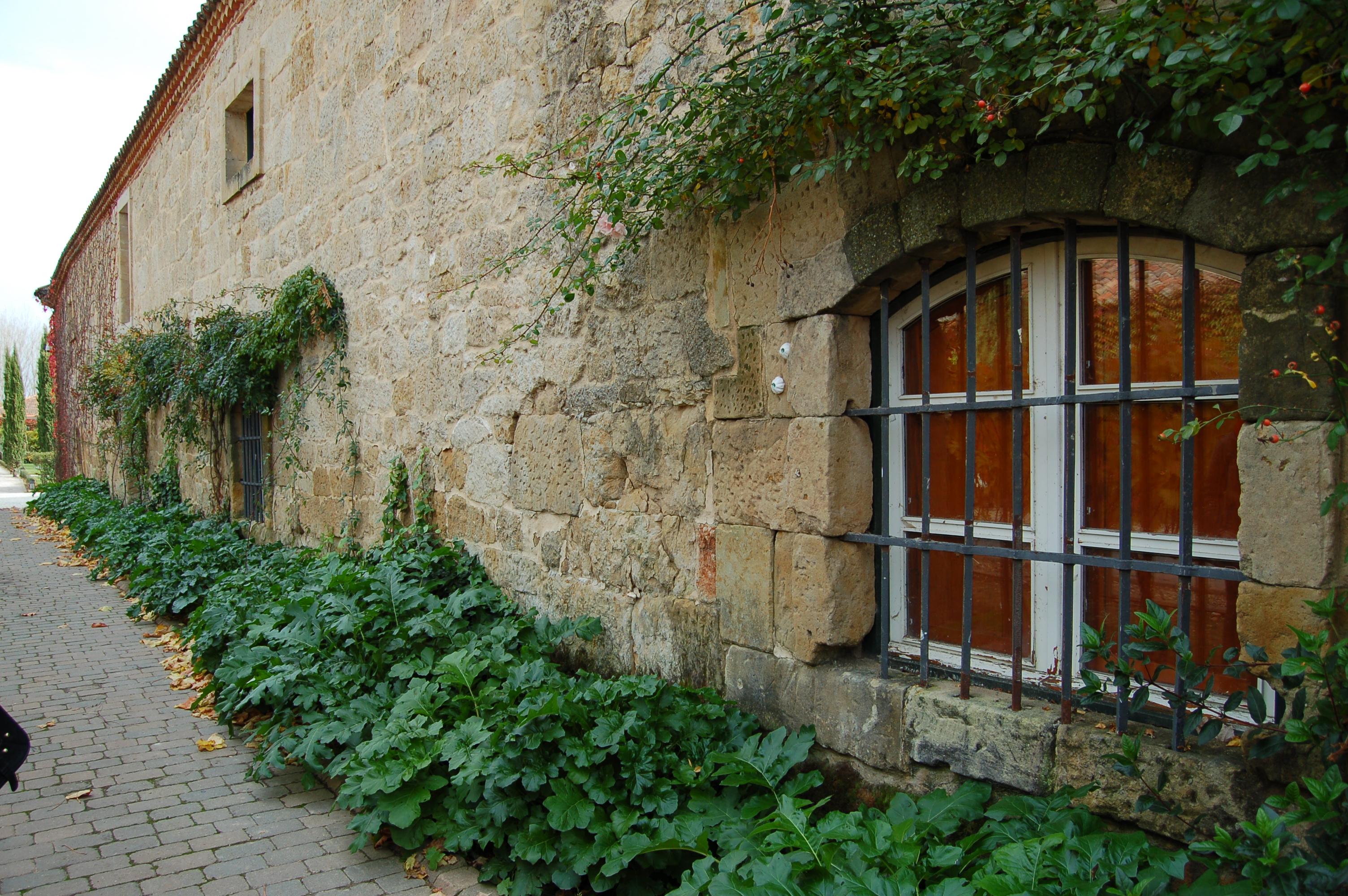 Esporas en Salamanca