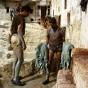 Las tanneries de Fez